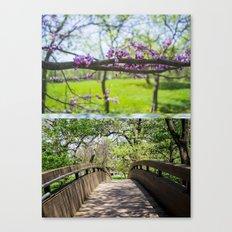 Bridges and Branches Canvas Print