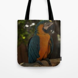 Colors1 Tote Bag