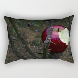 The Forbidden Rectangular Pillow