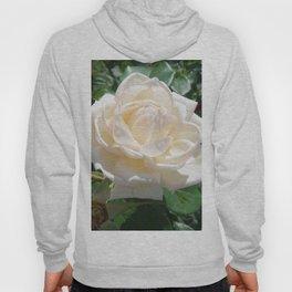 the last Rose Hoody