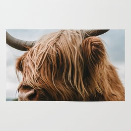 Scottish Highland Cattle - Animal Photography Rug