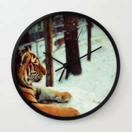 Winter afternoon Wall Clock