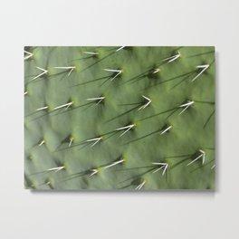 Cactus Needles Metal Print