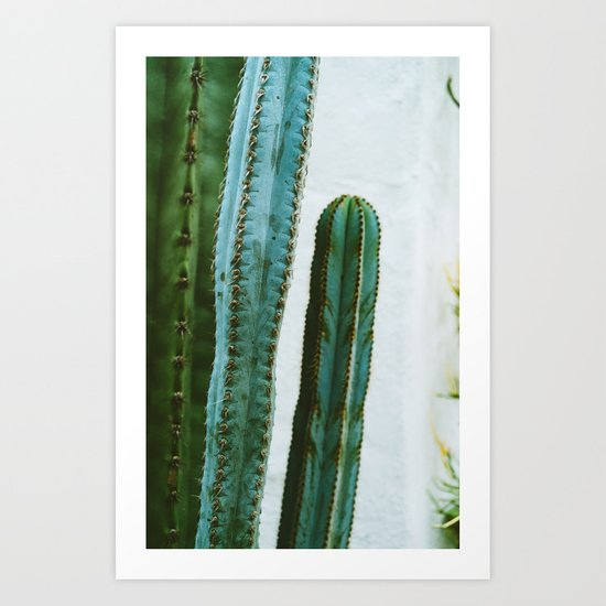 California Cactus Garden II by bethanyyoung