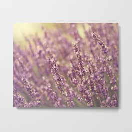 Sea of Purple Metal Print