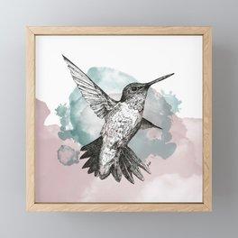 Hummingbird Framed Mini Art Print