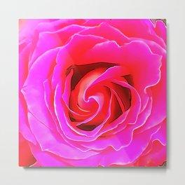 Pink Rose 12 Metal Print