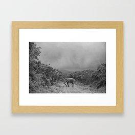 safari1 Framed Art Print