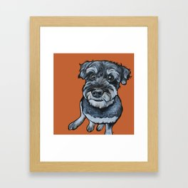 Frankie the Schnoodle Framed Art Print