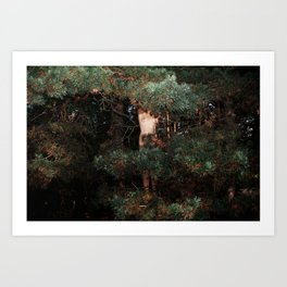 The Eyes of the Forest Art Print