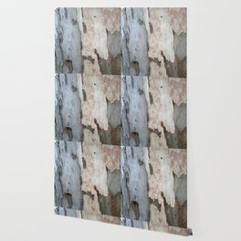 Bark Of A Eucalyptus Tree  Wallpaper