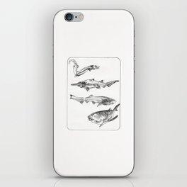 Deep Sea Sharks iPhone Skin