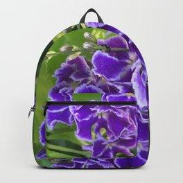 Geisha Backpack