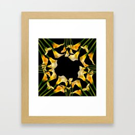 Golden Calla Lilies Black Garden Art Framed Art Print