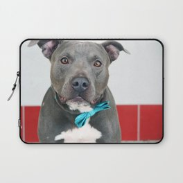 Handsome Blue Pitbull Laptop Sleeve