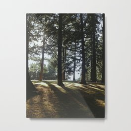 MT. Tabor Metal Print