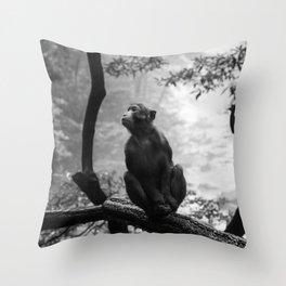 Monkey n Jhanjiajie Throw Pillow