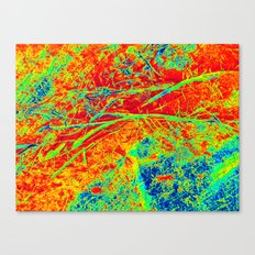 Vexed in Red Canvas Print