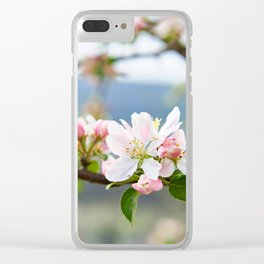 Apple blossom in spring Clear iPhone Case