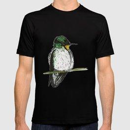 Juan Fernandez Firecrown T-shirt