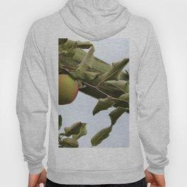 Apple Picking Hoody