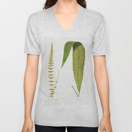Polypodium Gracilis and P Repens from Ferns British and Exotic (1856-1860) by Edward Joseph Lowe Unisex V-Neck