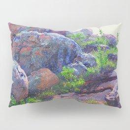 Rocks at Lukenya Hills, Africa by William R. Leigh Pillow Sham