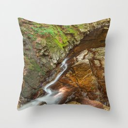 Chesterfield Gorge Stream Throw Pillow