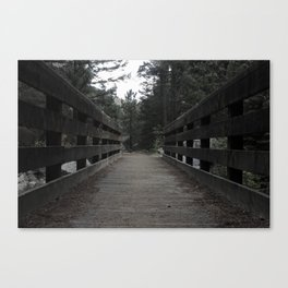 Lonely Path Canvas Print