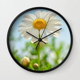 Daisy 0143 Wall Clock
