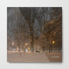 Dog in the Snow Metal Print