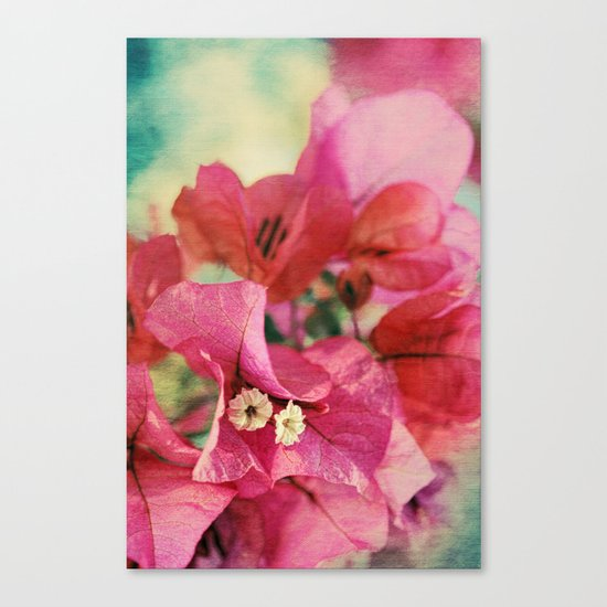 Vintage Bougainvillea Flowers in pink & green with textures Canvas Print
