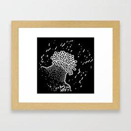 Moonlight Anemone Framed Art Print