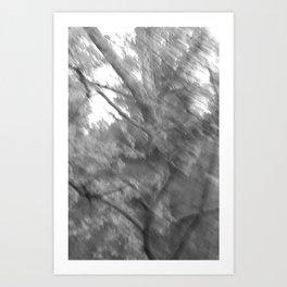 Treeage I - BW Art Print