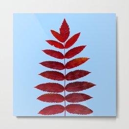 Red Sumac Leaves Metal Print