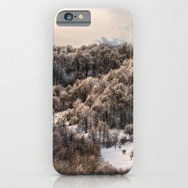 Winter Landscape 3 iPhone Case