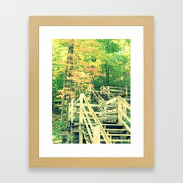 Tree and Stairs Framed Art Print