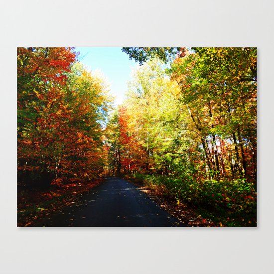 Into the Fall Forest Canvas Print