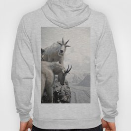 Hi, we are the mountain goats Hoody
