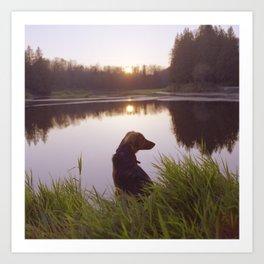 Sunset In the marsh Art Print
