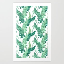 Native Ferns, Vintage Tropical Art Print