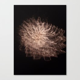 in the sky or under the sea? Canvas Print