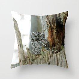 Adult male screech owl Throw Pillow