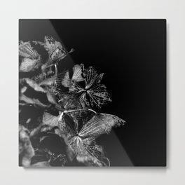 Skeleton Petals Metal Print