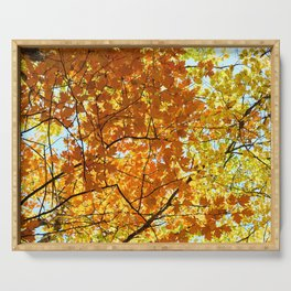 Majestic Autumn Serving Tray