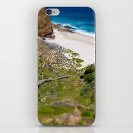 down the beach path iPhone Skin