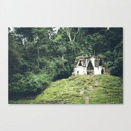 Palenque Ruins, Chiapas, Mexico 2 Canvas Print