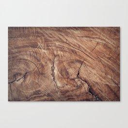 wood surface art Canvas Print