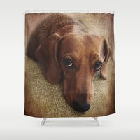 dachshund Shower Curtains featuring Dachshund by Tennessee Backroads