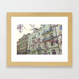 Blossom, Prague. Framed Art Print